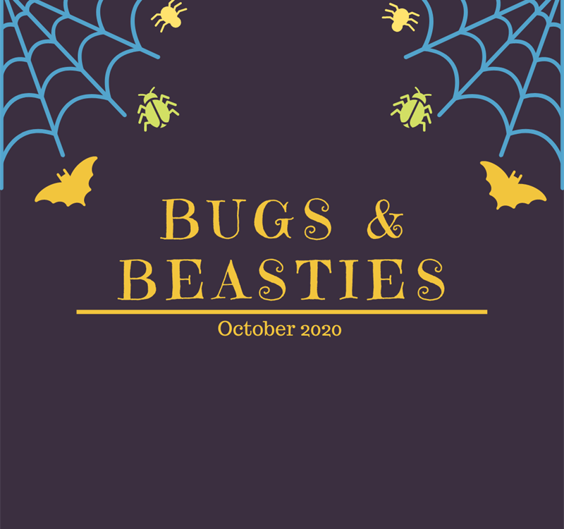 Bugs & Beasties Halloween Workshop 2019!!
