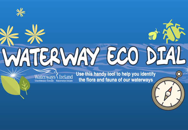 Waterway Eco Dial